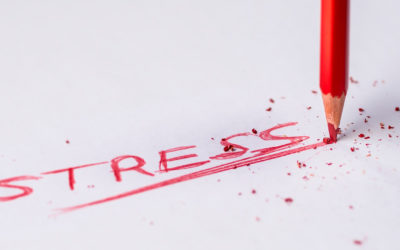 A Great Lesson on Stress
