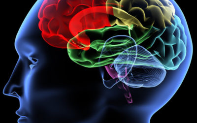 How to Overcome Brain Ageing Patterns